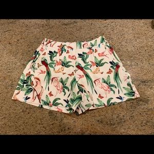 Ann Taylor Factory Shorts with bird/palm design